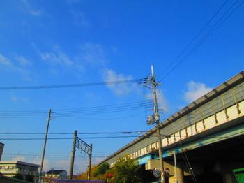 IMG_4371.JPG