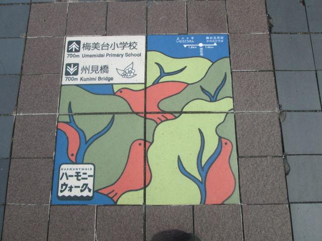 IMG_3989.JPG