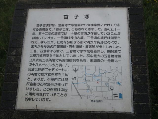 IMG_7269.JPG