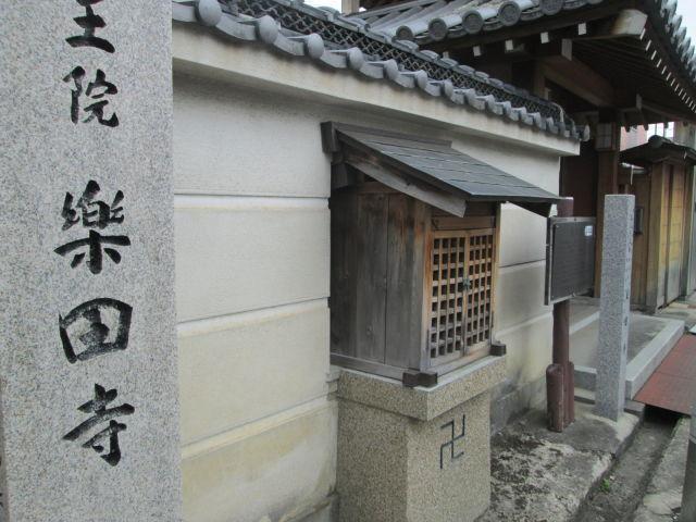 IMG_9908.JPG