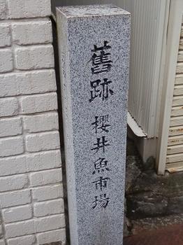 PC066549.JPG